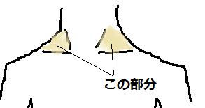 sakotsu