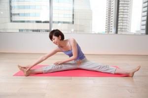 yogajim1
